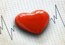 World Heart Day : Effort to beat Heart Diseases